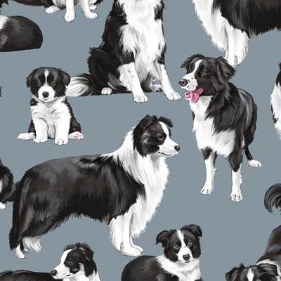 Dogs category