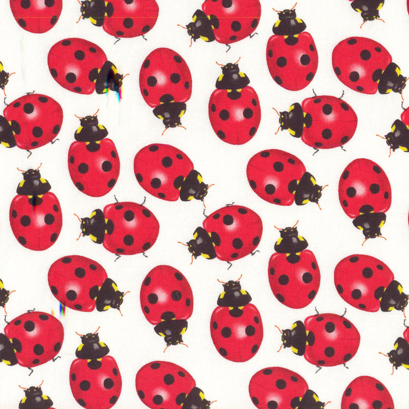 Ladybirds category