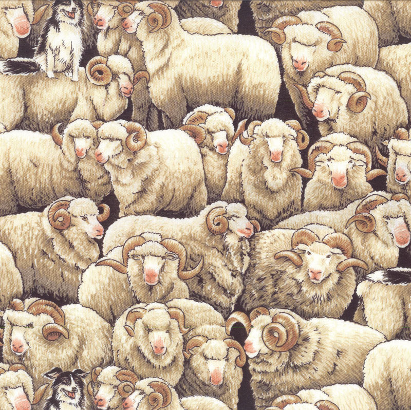 Sheep category