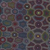 Australian Indigenous Aboriginal Akuna Dreaming by Agnes Rubuntja Quilting Fabric
