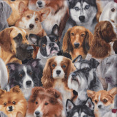 Dogs Corgi Border Collie Quilting Fabric