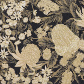 Australian Sun Classic Grevillea Banksia Flowers on Black Quilting Fabric