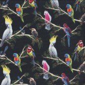 Australian Birds of The Bush Parrots Branches on Black Quilting Fabric