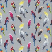 Australian Birds of The Bush Parrots Lorikeet on Grey Quilting Fabric