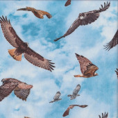 Birds of Prey on Blue Sky Hawks Eagles Quilting Fabric