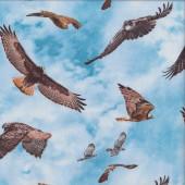 Birds of Prey on Blue Sky Hawk Eagle Quilting Fabric