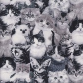 Cute Black and White Tabby Cats and Kittens Quilting Fabric