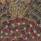 Australian Indigenous Aboriginal Bush Banana by Donna Abbots Quilting Fabric