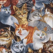 Cat Breeds Black and White Tabby Quilting Fabric