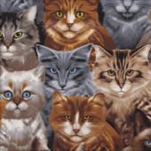 Cat Kitten Breeds Tabby Siamese Allover Quilt Fabric
