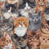 Cats Kittens Quilting Fabric