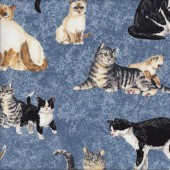 Cats Kittens on Blue Makower Animal Tabby Patchwork Quilting Fabric