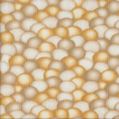 Chicken Eggs Quilting Fabric