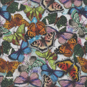 Colourful Butterflies Butterfly Insect Quilting Fabric
