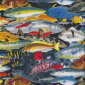 Colourful Fish Quilting Fabric