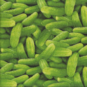 Cucumbers Veggie Kitchen Cooking Quilting Fabric