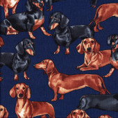 Dachshunds on Navy Quilt Fabric