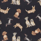Dalmatians Pugs Dachshunds Dog Friendly on Dark Brown Quilting Fabric