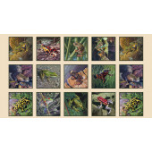 Assorted Frogs in Squares Wildlife Quilting Fabric Panel
