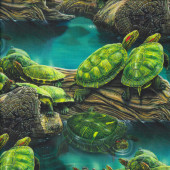 Turtles in Pond Wildlife Water Nature Quilting Fabric