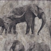 Large Elephant and Calf on Grey LARGE PRINT Quilting Fabric