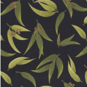 Australian Sun Eucalyptus Gum Leaves Gumnuts on Black Quilting Fabric