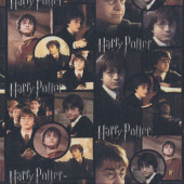 Harry Potter Quilting Fabric Remnant 37cm x 112cm
