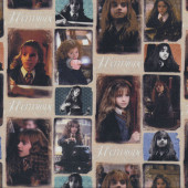 Harry Potter Hermione Granger Digitally Printed Licensed Fabric