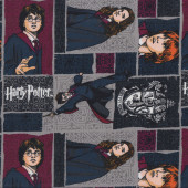 Harry Potter on Grey Hermione Ron Gryffindor Kids Licensed Quilting Fabric