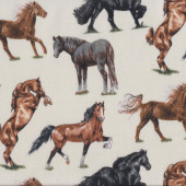 Horse Breeds on Cream Brown Black Grey Horses Country Quilt Fabric