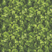 Kale Vegetable Veggie Kitchen Quilting Fabric