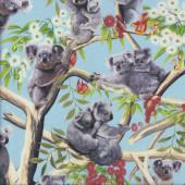 Koalas on Light Blue Gumnut Flowers Australian Animal Quilting Fabric