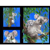 Australian Koala Bears in Eucalyptus Trees Quilting Fabric Panel