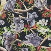 Koalas on Black Gumnut Flowers Australian Animal Quilting Fabric