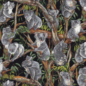 Koalas on Black Australian Animal Gum Tree Eucalyptus Quilting Fabric