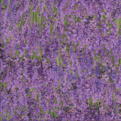 Lavender Flowers in Fields Floral Landscape Quilting Fabric