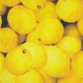 Lemons Design Nylon Ripstop Waterproof Wipe Clean Fabric