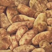 New Brown Potatos Spuds Potatoes Vegetable Kitchen Quilting Fabric