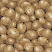 Brown Potatos Spuds Potatoes Vegetable Veggie Kitchen Quilting Fabric