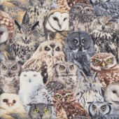 Gorgeous Realistic Owls Bird Wildlife Animal Quilting Fabric