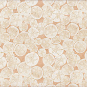 Sand Dollars on Tan Beach Sea Nature Shells Landscape Quilt Fabric