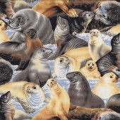 Seals Artic Wonders Wildlife Quilting Fabric