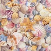 Beautiful Shells Starfish Beach Ocean Sea Quilting Fabric