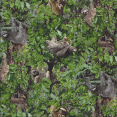 Playful Sloths Hanging From Green Trees Wildlife Quilting Fabric