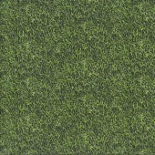 Grass Born To Score Soccer Sport Kids Quilting Fabric