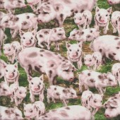 Spotty Pigs Piglets on Green Grass Farm Animal Country Quilting Fabric