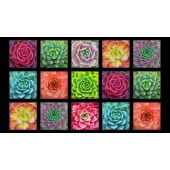 Succulent Charm Gardening Plants Succulents Quilting Fabric Panel