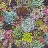 Succulents Quilting Fabric