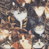 Grey Brown Ginger Tabby Cats Pet Quilting Fabric