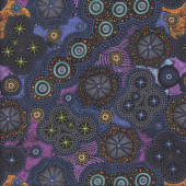 Walkabout Milky Way Circles Quilting Fabric